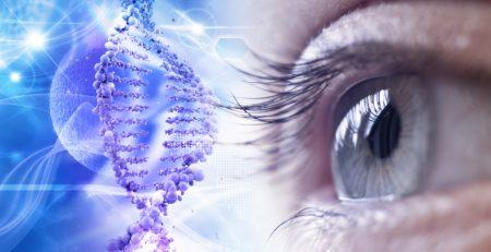 test genetico AMD degenerazione maculare catania
